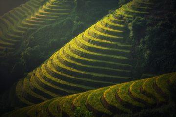 טיולים מאורגנים לויטנאם